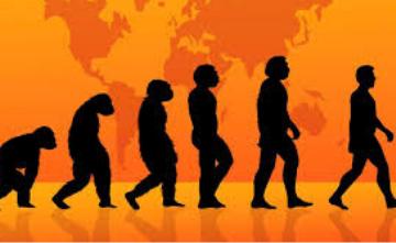 Are Humans Still Evolving?